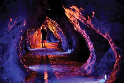 Leisure Time Tours Day Trip to Ruakuri Cave