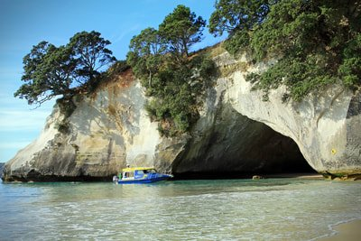 Cathedral Cove Coromandel on the Pacific Coast Highway