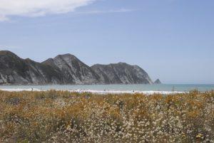 Mahia Peninsula Beach