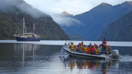 Exploring the Fiordland coastline by tender craft off the Milford Wanderer