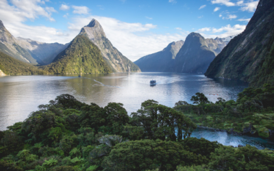 South Island Value Tour – May