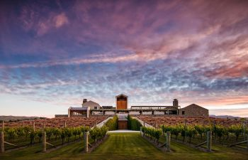 Large winery with vines in front at sunset