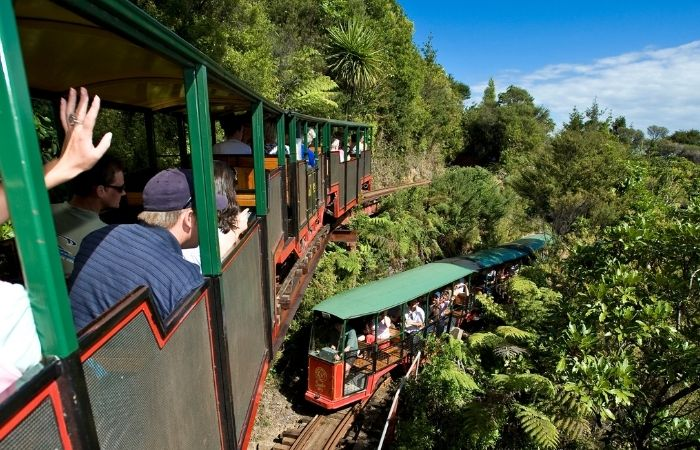 Driving Creek Railway, train going through the bush