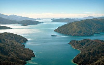 Explore New Zealand by coach (8 days)