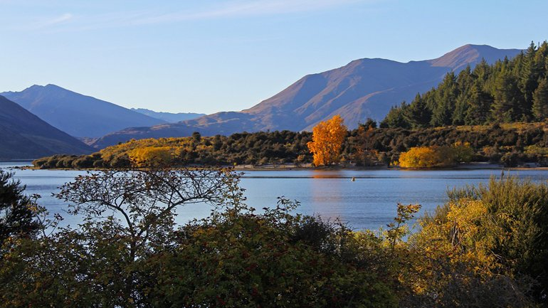 Lake Wanaka with green yellow and orange trees surrounding it