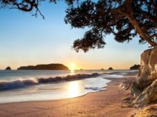 Coromandel Sights & Beaches
