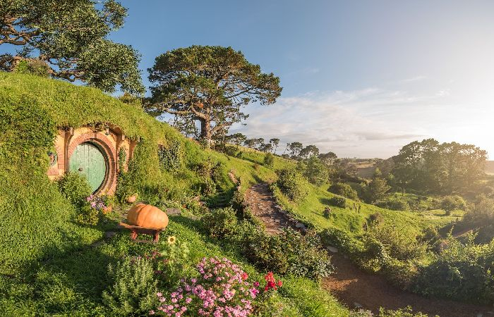 Hobbiton movie set in the Waikato