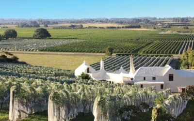 Hawkes Bay Wine Package