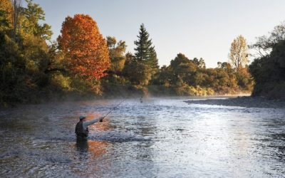 Fishing & Hunting Getaway -River Birches
