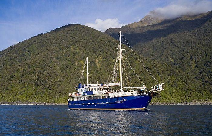 milford wanderer Preservation Inlet Cruise