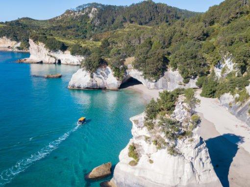 Auckland - Bay of Islands - Coromandel Road Trip (8 days)