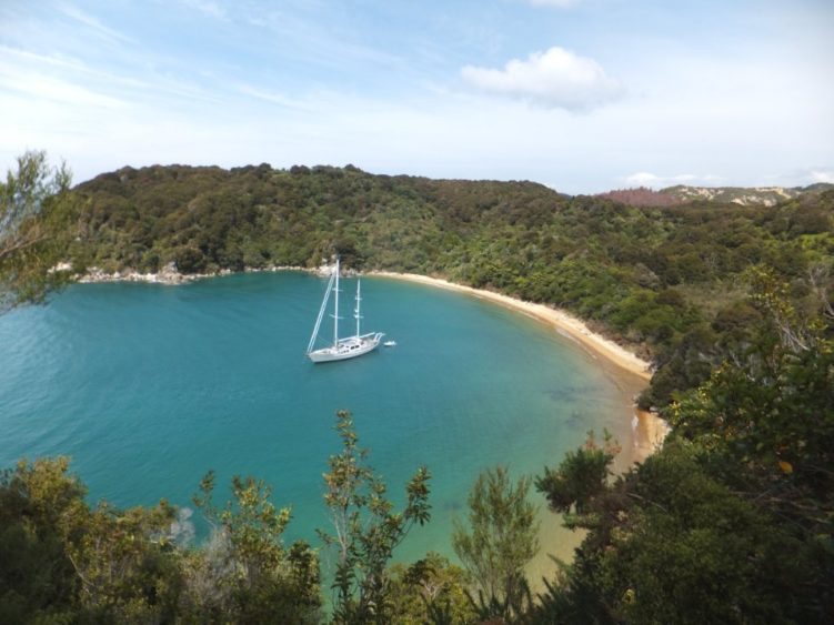 Abel Tasman private cruise with guided walk