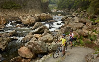 North Island Cycling Tour