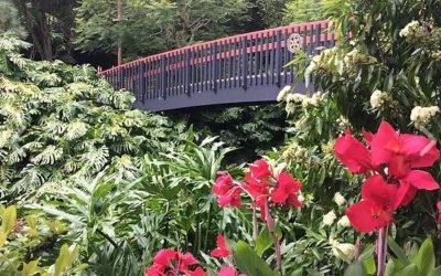 Northland Gardens, Art, Sculptures & History