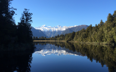 Central South Island Wanderer