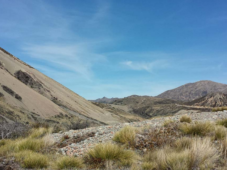 Molesworth High Country Station - Group 2
