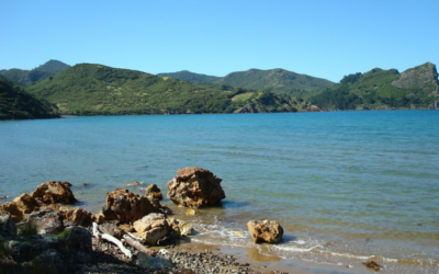 Great Barrier Island – May