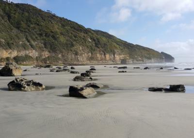 Farewell Spit Nelson beach