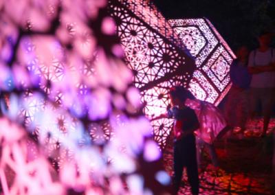 TSB Festival of Lights - close up of Hybycozo