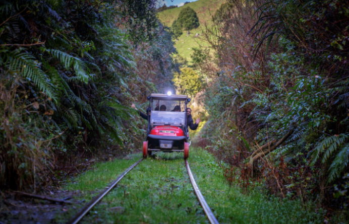 Forgotten World Rail Carts