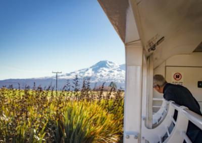Northern Explorer - Man looking back at Ruapehu