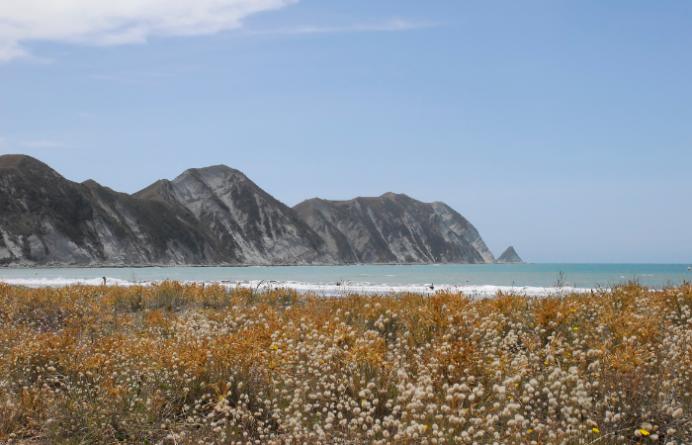 Mahia Peninsula - Scenic East Cape