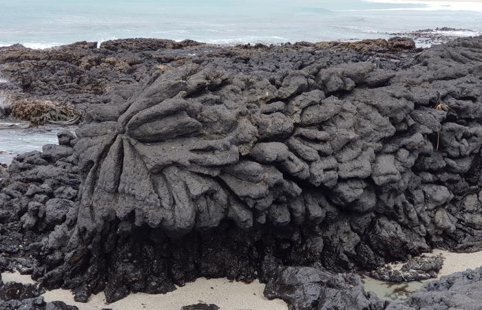 Splatter Rock made from volcanoes underwater Chatham Island